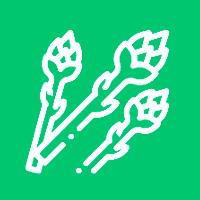 spargel-icon-gruen
